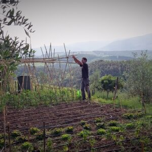 Alessio is working on our vegetable gardens to produce a good quality seasonal products - Km zero tours slow travel Tuscany