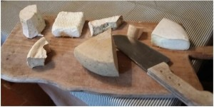 Goat cheese experience in Tuscany with Km Zero Tours