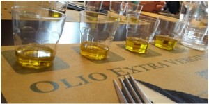 Tasting the various olive oils from Chianti region to discover the good qualities - Km Zero Tours - Slow Travel in Tuscany